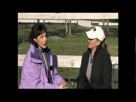 Lynn Palm on the Road to the World Equestrian Games