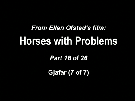 16-26 Horses with Problems - Gjafar 7-7