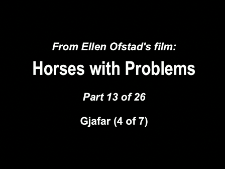 13-26 Horses with Problems - Gjafar 4-7