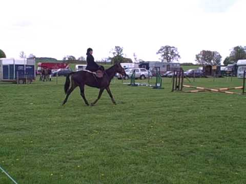 Leila - South Kilworth Clear Round Sidesaddle One