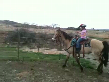 Granddaughter riding my horse