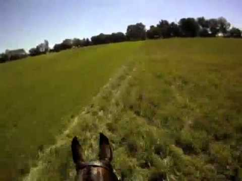 New Helmet Cam! Peter Atkins and HJ Hampton Richland Park CIC*** 2010