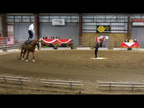 Vaulting Freestyle