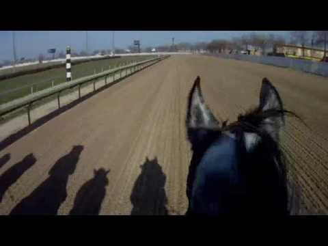 A Jockey's Helmet Cam View of a Real Horse Race