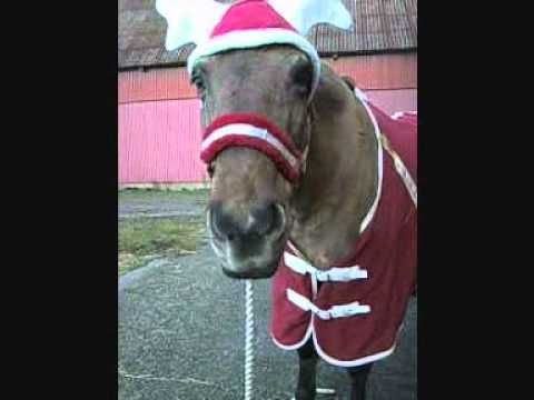 The Merry Christmas Pony - Singing Jingle Bell Rock