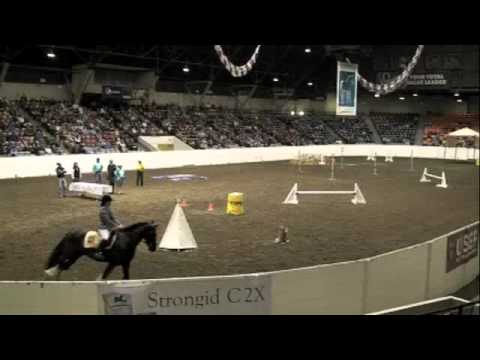 Every Dressage Horse Should Be Able to Do This