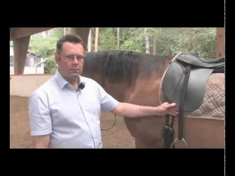 "DVD ""Does my saddle really fit?! by Desmond O´Brien"