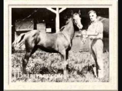 Famous Race Horses As Foals