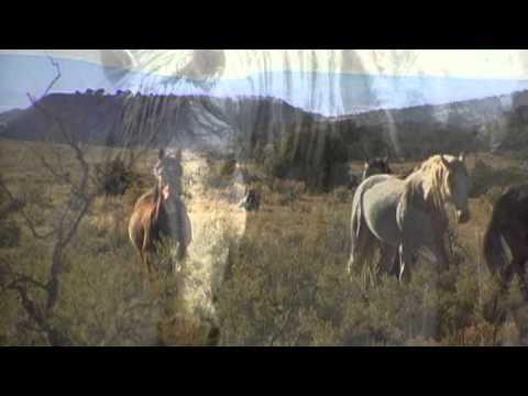 WILD HORSE FILM TRAILER