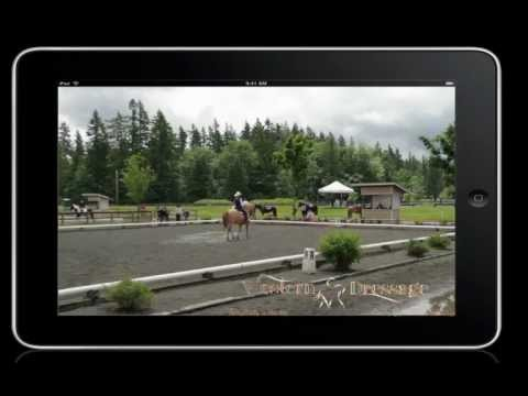 Can a 12 year old Appaloosa Trail Horse do Western Dressage?