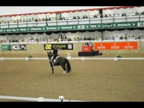 Valegro and Charlotte Dujardin - FEI CDI GP Freestyle at Hartpury 90.65%- 08/07/2012