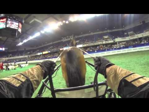 "Helmet Cam - William Shatner Driving!  ""More (Horse)Power, Scotty!"""