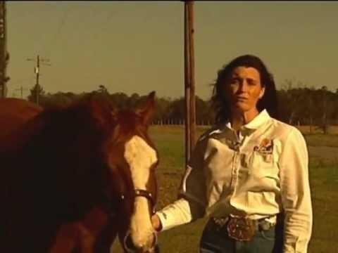 Horse Supplement Maximum Performance and Christ Lameier