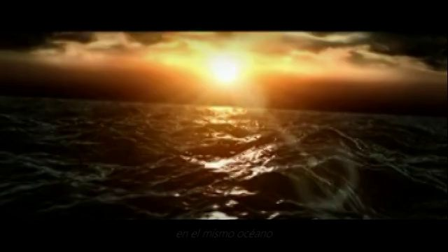 A la Luz del Despertar. - por Daniel Cipolat -