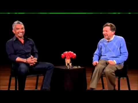 Eckhart Tolle entrevista a Cesar Millan (1 de 3)