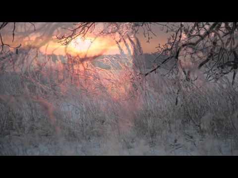 Beautiful Earth - Into the Sun Winter Wonderland