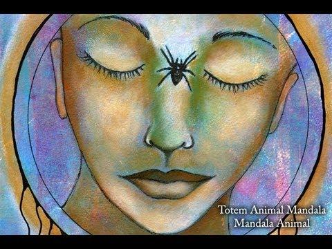 Spider Mandala. Animal Mandala Challenge