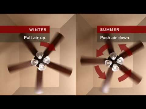Consumer Education: Energy Efficiency of a Fan
