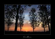 An Autumnal Evening
