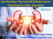 Can You Bear The Cost Of kidney Cancer Treatment In India  See How