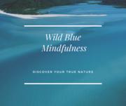 Monthly Friday Night Community Meditation at Wild Blue Mindfulness Studio