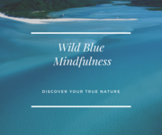 Monthly Friday Night Community Meditation at Wild Blue Mindfulness Studio