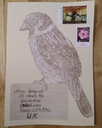 Sparrow print that went to Alan Brignull