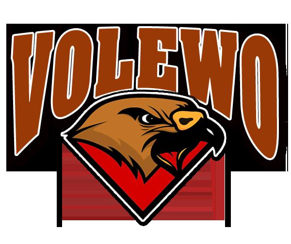 VOLEWO Logo