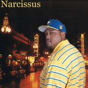 Narcissus716