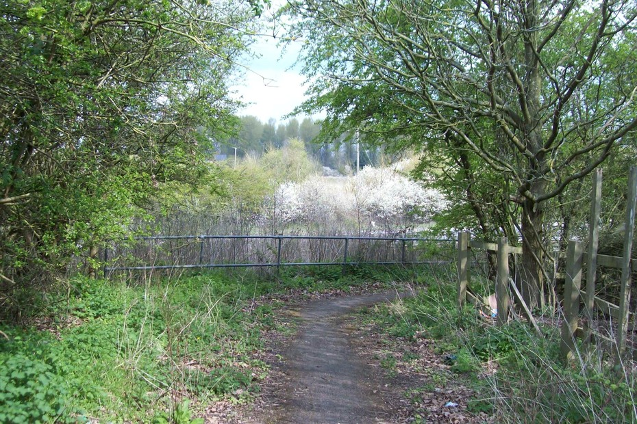 D16631 Footpath to SMJ Bridge @ Towcester 13.4.19