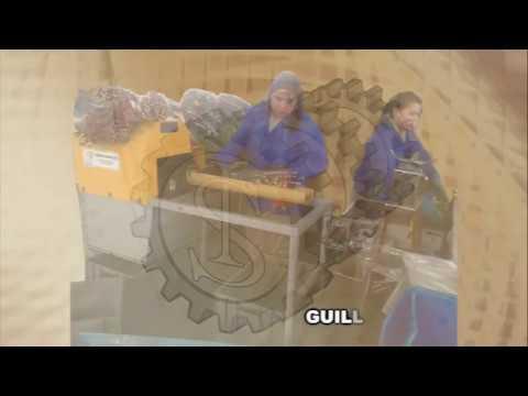 GUILLOTINAS ELECTRICAS PARA FLORES. Analpes 2019