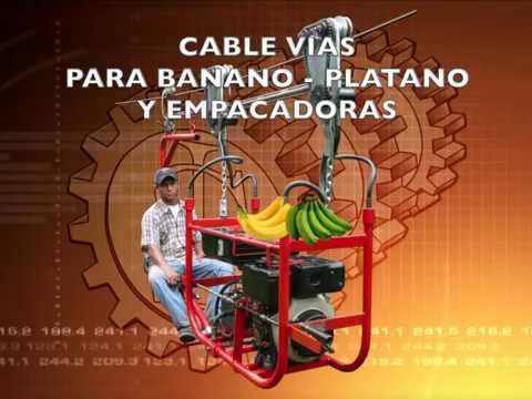 CABLE VÍA PARA BANANO. Analpes 2019.