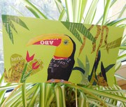 Collaged Toucan