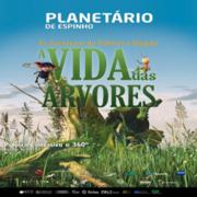 A Vida das Árvores - PLANETÁRIO DIGITAL IMERSIVO
