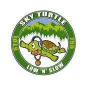 Art Work: Sky Turtle