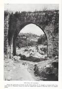 NGM 1920-01 Pic 04