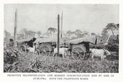 NGM 1920-01 Pic 13