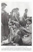 NGM 1920-01 Pic 17