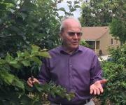 FRUIT TREE PRUNING DEMONSTRATION