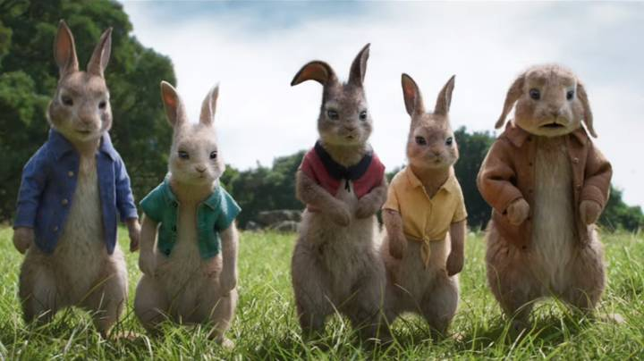 Peter Rabbit 2: The Runaway (2020) fdadf