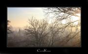 Fog turning into Sunshine...