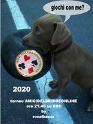 torneo AMICIDELBRIDGEONLINE/ros  20 GENNAIO 2020 ore 21.40 su BBO