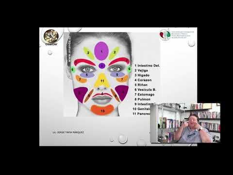 Análisis Bioenergético del rostro y su relación con sistemas orgánicos