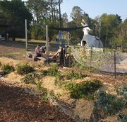 LFG Event: Peachey Community Garden