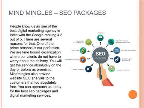 Top Organization That Provides Exclusive SEO Packages For Busines