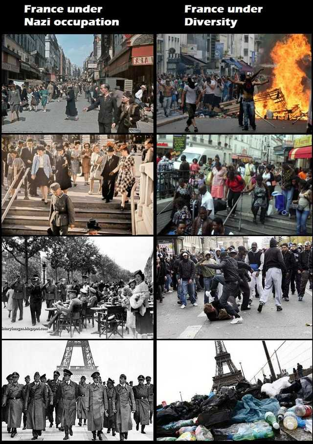 Nazis vs Diversity