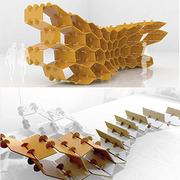Summer Workshop Parametric and Design Fabrication