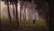 Βόλτα στην Ομίχλη!
