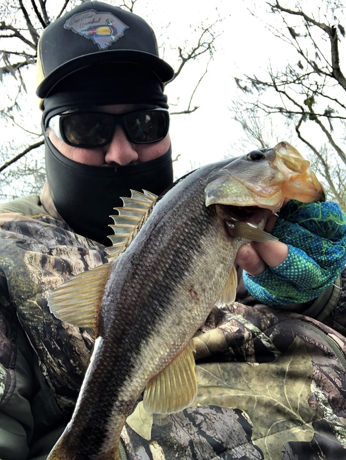 Small Bass Very Active Ahead Of the Front.....1/18/2020