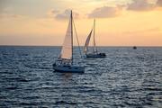 Barche da diporto